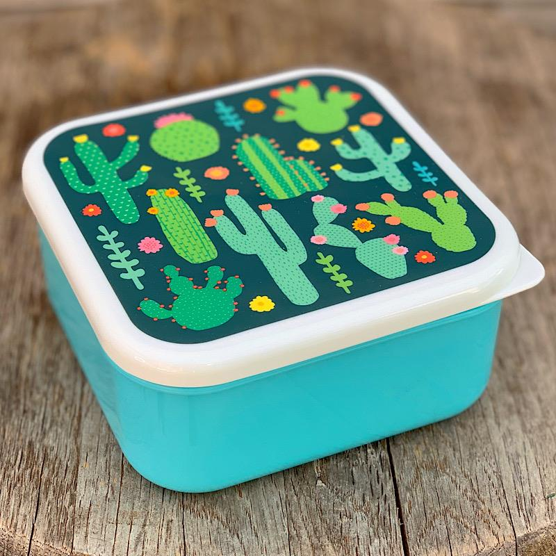 Colorful Cactus Lunch Box,MAXI011